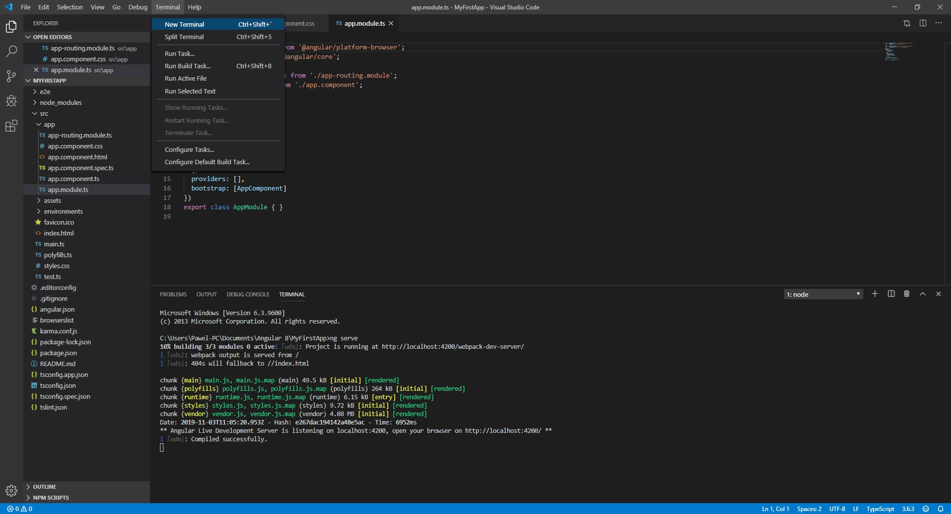 ng serve - visual studio code